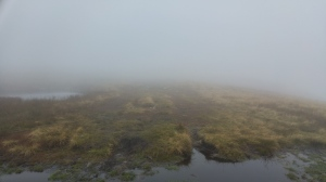 Foggy Red Screes Ambleside