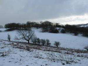 Snowy scene Hope Mountain