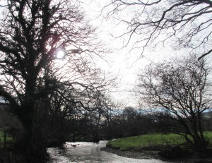River near Llanferres