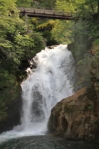 Slap Sum, waterfall Vintgar Gorge, Slovenia