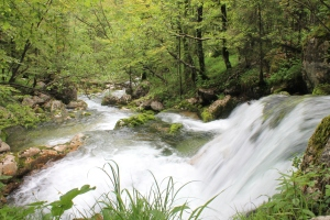 Waterfall near Bohinj Slovenia