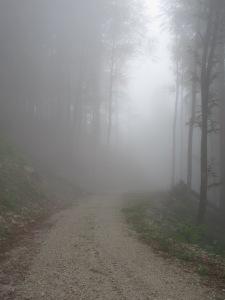 Getting misty