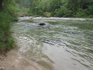 River near Bohinjska Bela