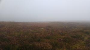 Misty moors