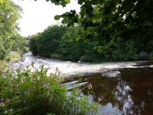 River near Llanfair Talhaiarn