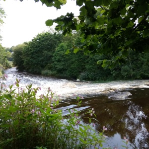 River near Llanfair Talhaiarn