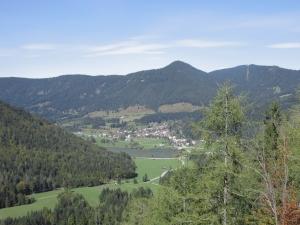 Views from walk down Vitranc