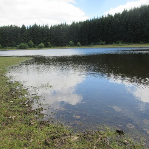 Pendinas reservoir Llandegla